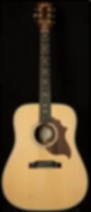 Gibson 2019 Hummingbird Sustainable