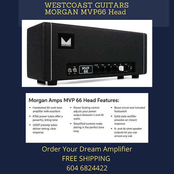 Morgan MVP66 Head FREE SHIPPING