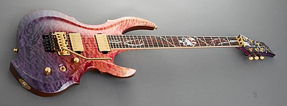 ESP Custom Guitars Dealer Canada FREE SHIPPING & INSTALMENT PAYMENTS AVAILABLE
