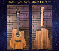 Tokai Cats Eyes Acoustic Electric