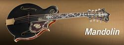 Gibson Mandolins Dealer Canada