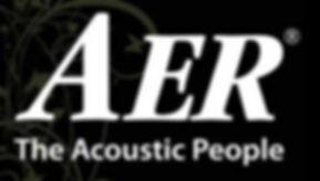 AER,acoustic,Marshall,Blackstar,Dealerl,Westcoast,Guitars,Vancouver