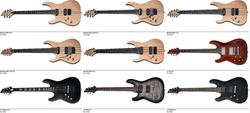 Left Hand Schecter Guitars Dealer Canada
