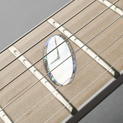 Caparison Inlay