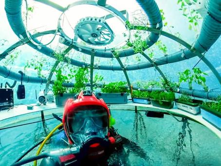 Nemo's Garden- An Underwater Farm