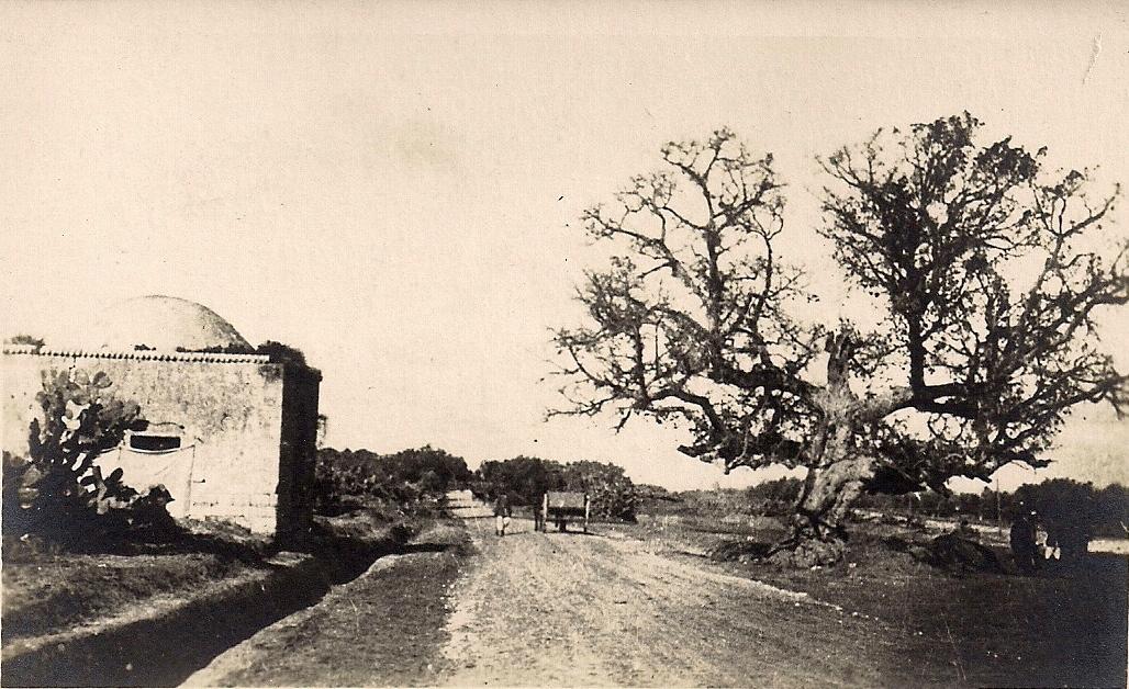 הבאר בכניסה הדרומית, מקור לא ידוע