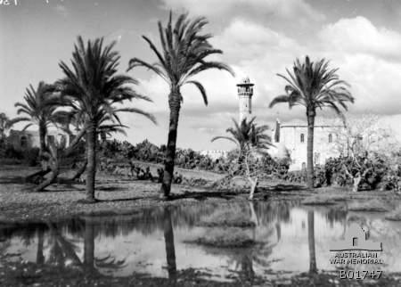המסגד בלוד 1918, מקור לא ידוע