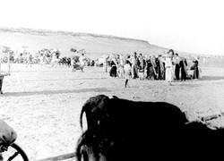בריחת תושבי לוד 1948, מקור_ הארכיון הדיג