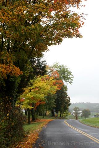 Pleasant View Soaps Staunton, VA