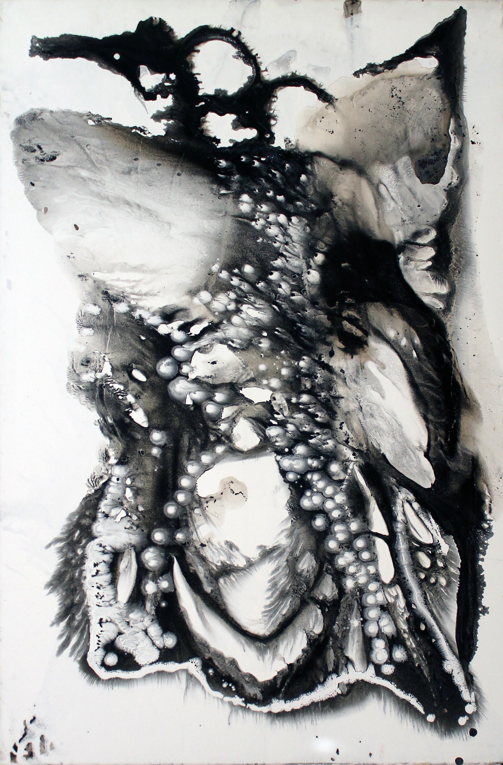Série_Noir:Blanc7_80x120-2011.jpg