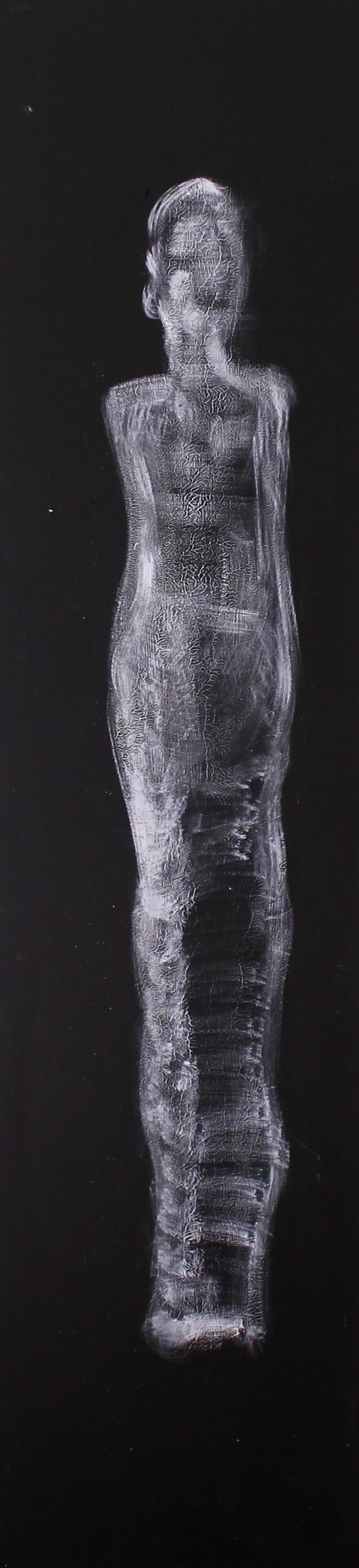Ombre 40x180-2012.jpg