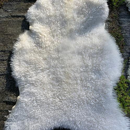 Sheepskin - White