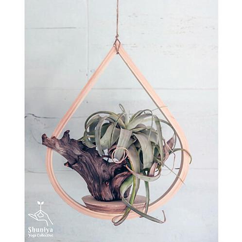 Wood Plant Hangers - Single Tear Drop