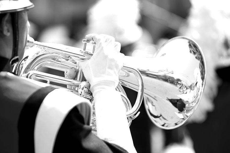 Horn Section_edited.jpg
