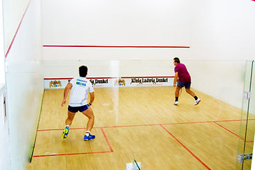 Squash in Hannover Hemmingen