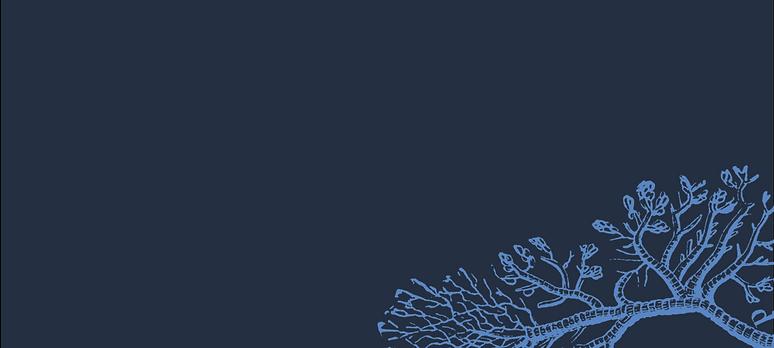 regencommunitiesNetwork-Web-Banner-3-133