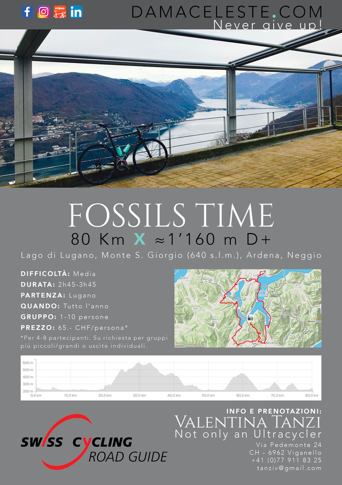 Fossils Time