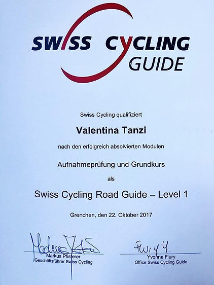 Swiss Cycling Road Guide.jpg