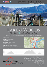 Lake Woods