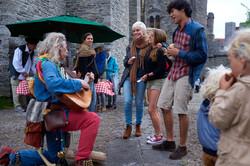 Middeleeuwse troubadour boeken