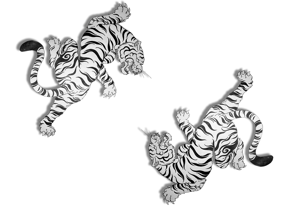 tigre%20background_edited.png