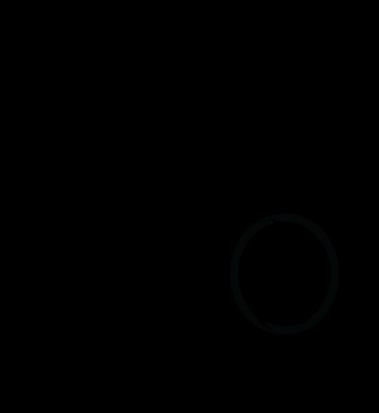 shabbat 360 logo 4.png