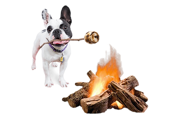 Pupmallows.png