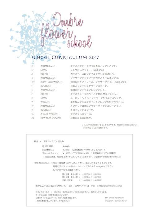 SCHOOL CURRICULUM 2017