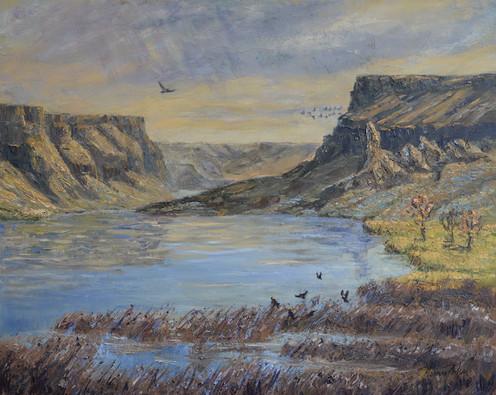 The Morley Nelson Snake River Birds of P