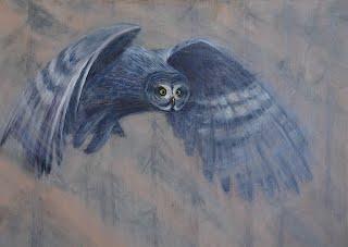 Mystery Owl.jpg