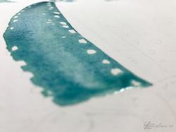 wet on wet watercolor.jpg