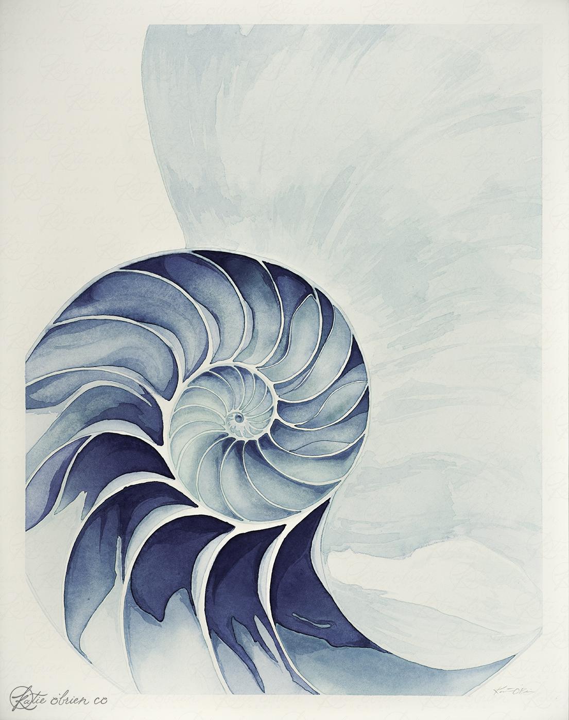 Shell - A3.jpg