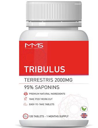 tribulus%201200%20x%20800_edited.jpg