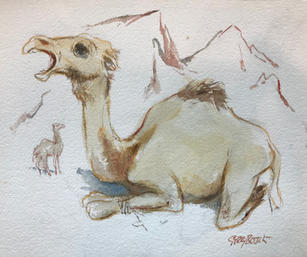 Camel by Gerry Bosch