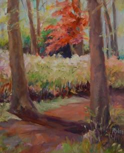 Callaway Garden by Susan Dolan