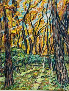 Sunlight Through Forest by John Springer