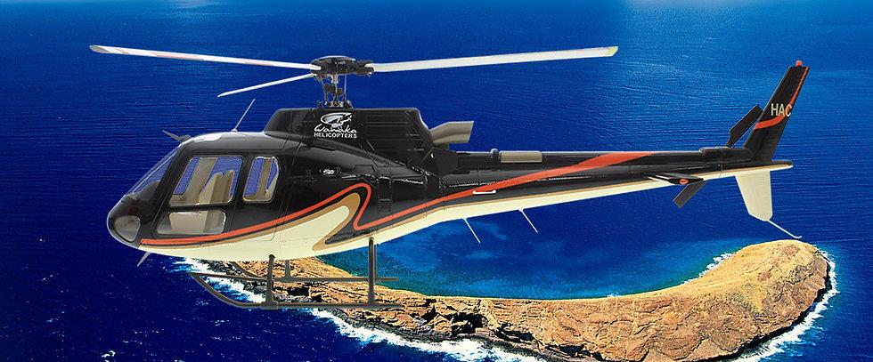 470 AS-350 ARF Black Orange