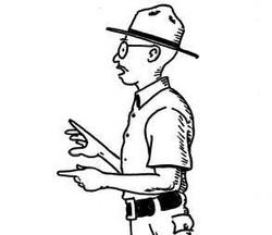 DMC Cartoon 1.jpg
