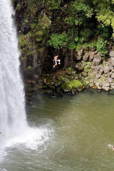 Whangarei falls.jpg Yes.jpg.jpg he jumped.jpg Wife is waiting in the water