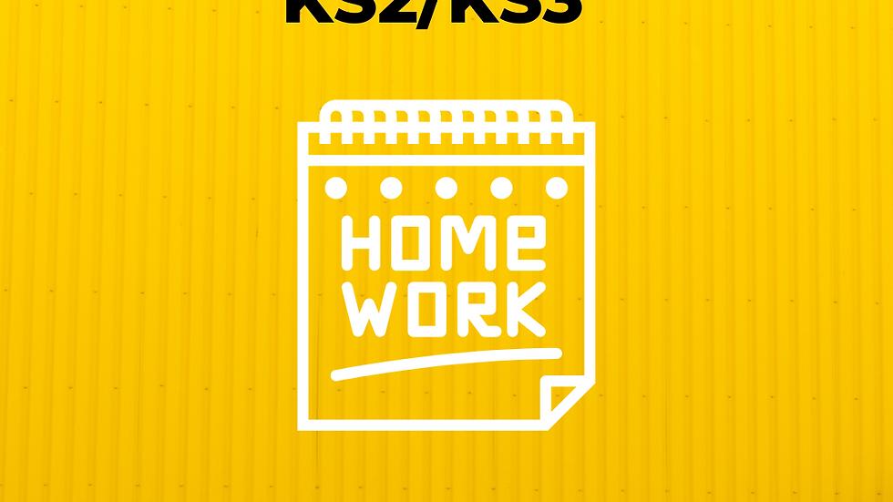 KS2/KS3 English Homework Paper 1