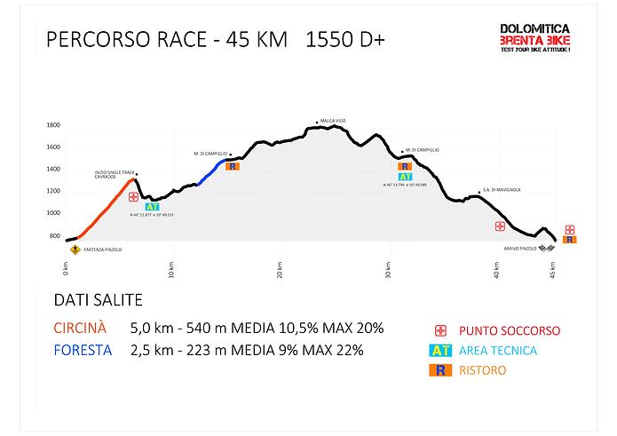 Altim Race 2020.png