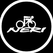logo NERI.png