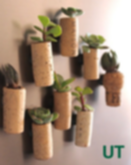wine cork plants.png