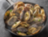 winexpert burlington clams white wine