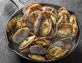 winexpert burlington clams white wine