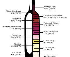best temperature for wine winexpert burl