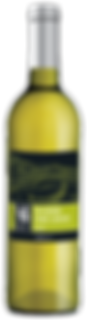 WX-White-Bottle_MCP_Pecorino-Flat-1.png