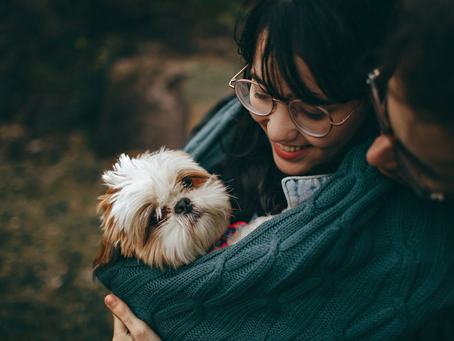 How to Make a Happy Home for Your First Pet