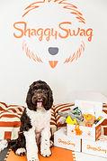 shaggy.JPG