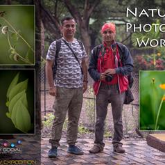 Workshop 7: Nature